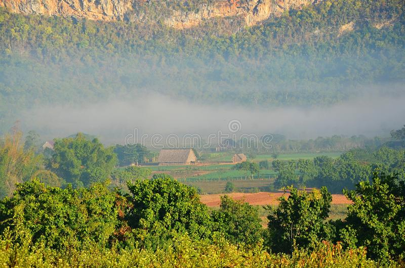 Vinalesvallei in de ochtendmist, Cuba royalty-vrije stock afbeeldingen