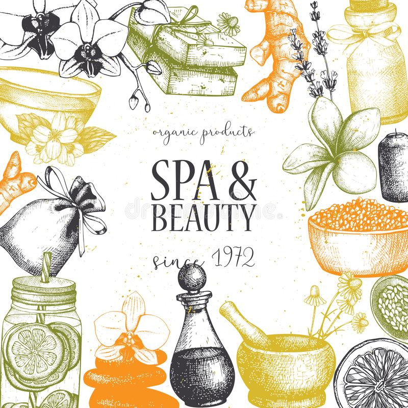 Vinatge dframe with hand drawn SPA and beauty illustrations. Vintage Cosmetics and aromatical ingredients background. Vector templ vector illustration