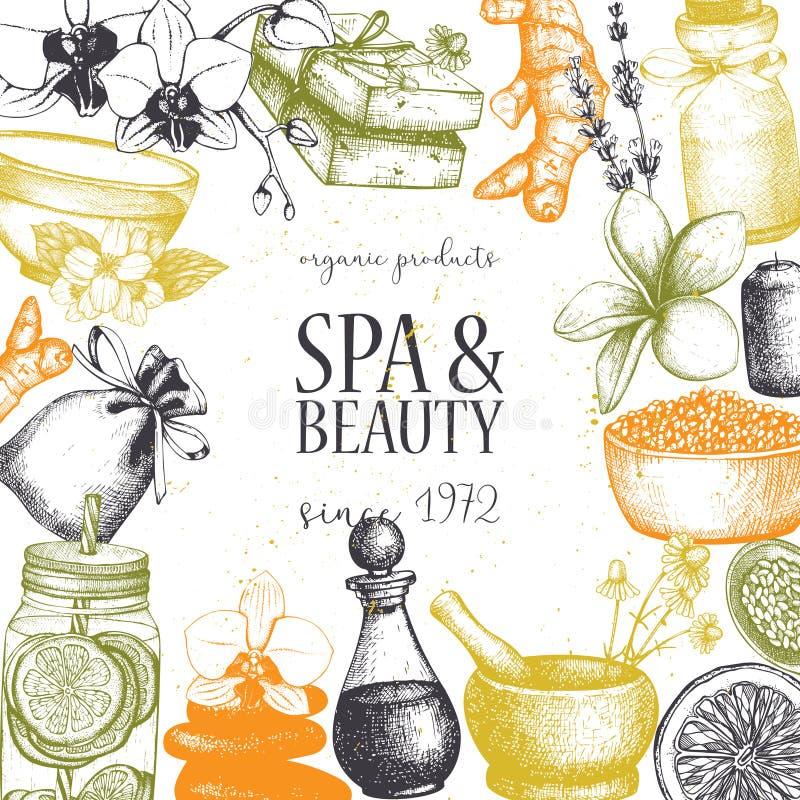 Vinatge dframe med handen utdragna SPA och skönhetillustrationer Tappningskönhetsmedel och aromatical ingrediensbakgrund Vektorte vektor illustrationer