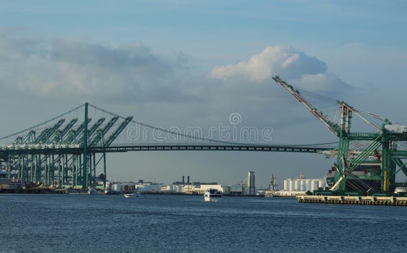 Vincent Thomas Bridge al porto di Los Angeles, California immagine stock