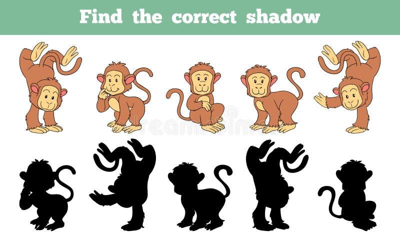 Vind de correcte schaduw (aap) stock illustratie