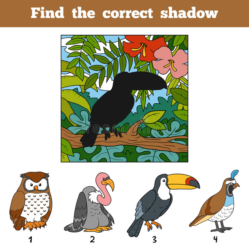 Vind de correcte schaduw Vind vogel door schaduw vector illustratie