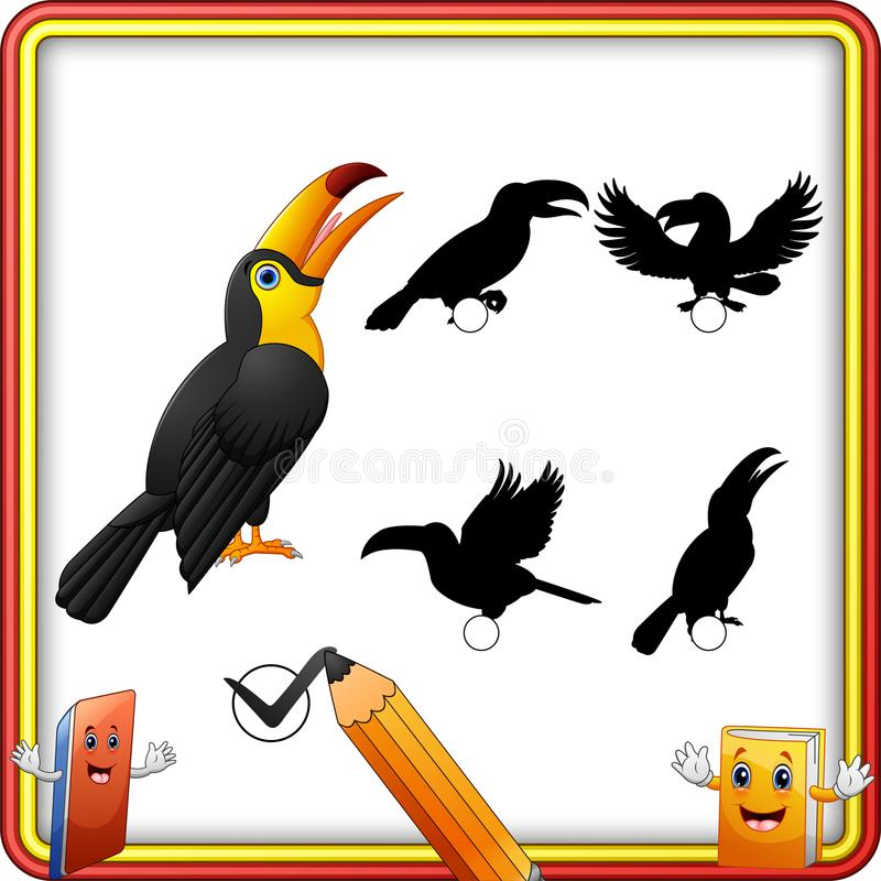 Vind de correcte Vogel van de schaduw grappige Toekan Onderwijsspel voor Kinderen royalty-vrije illustratie