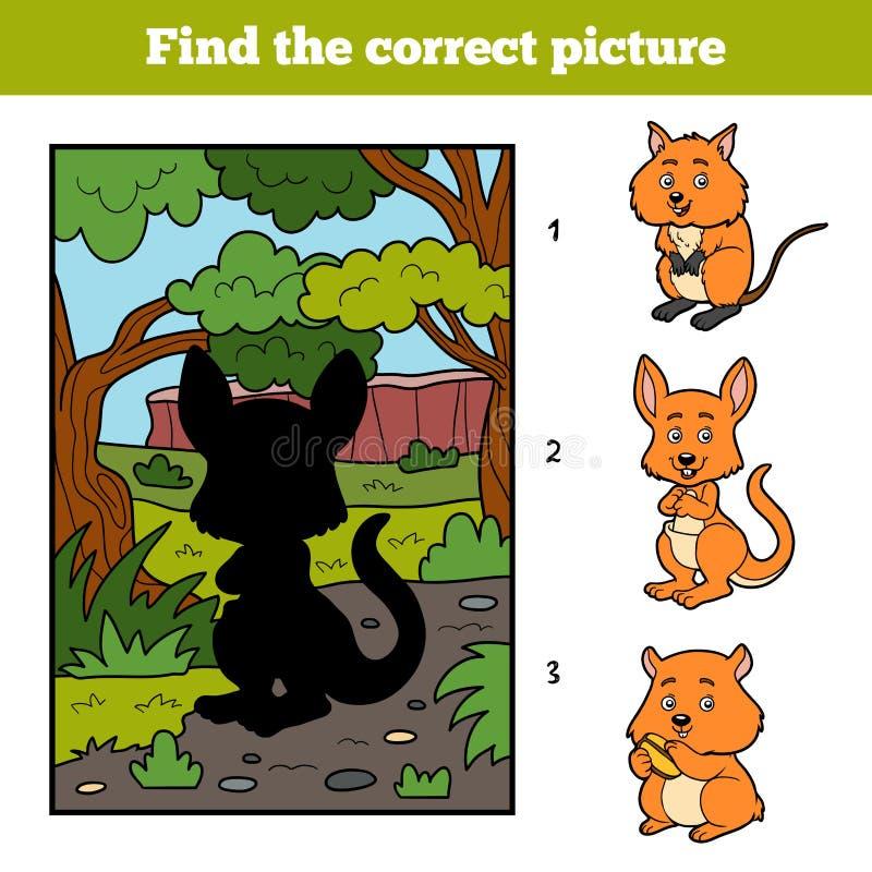Vind het correcte beeld Kangoeroe en achtergrond vector illustratie