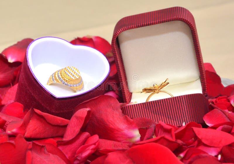 Vind Huwelijk Ring Ceremony Stock Images royalty-vrije stock afbeeldingen