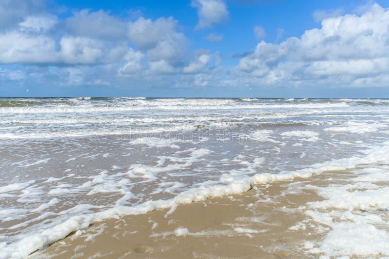 Vind och vågor skapar skum på stranden royaltyfri bild