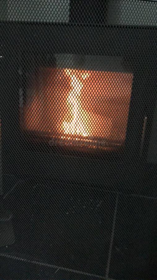 Vinda do inverno fotografia de stock royalty free