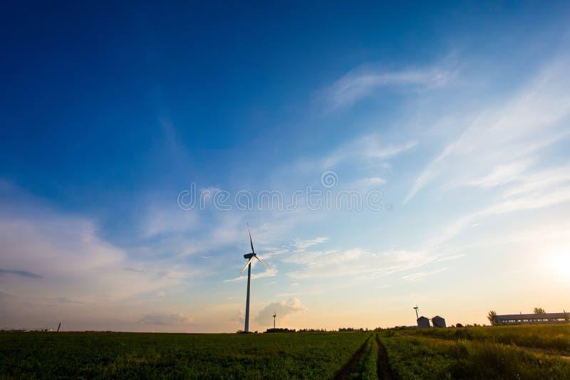 Vindbransch i landsbygd Turbiner i jordbruksmarker i afton H?rligt landskap arkivfoto