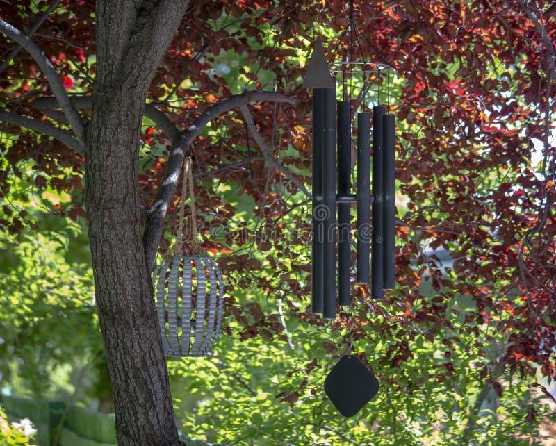 Vindchimes som hänger från ett träd på en färgrik dag royaltyfri bild