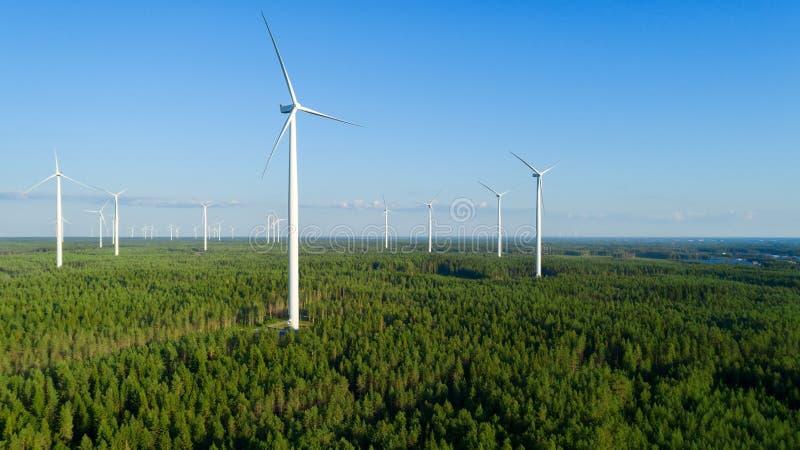 Vindkraftväxt i den gröna fältsikten och avlägsen skog på sommaraftonen royaltyfri foto
