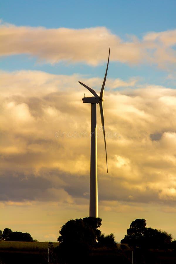 Vindturbiner i en vindkraftväxt på solnedgången royaltyfria bilder