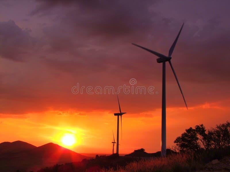 Vindturbiner med solnedgång arkivfoto