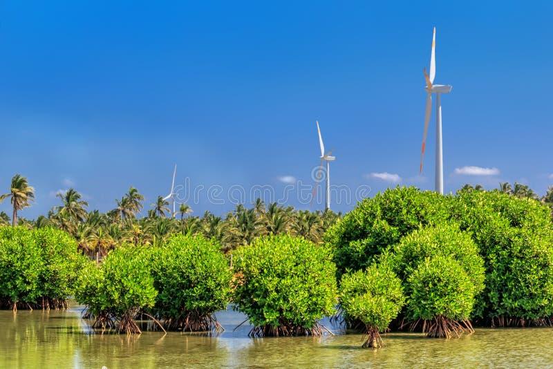 Vindturbiner på en sjö i djungeln av Sri Lanka alternativ digital wind för turbiner för källor för illustration för energifältgrä arkivbilder