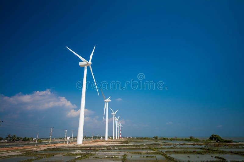 Vindturbiner som frambringar elektricitet i Sri Lanka royaltyfri fotografi