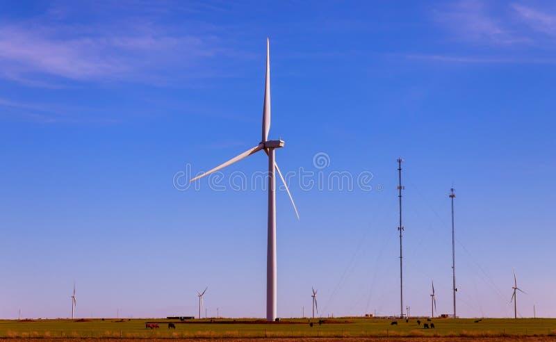 Vindturbinerna på vindlantgården av Texas ren förnybara energikällor royaltyfri bild