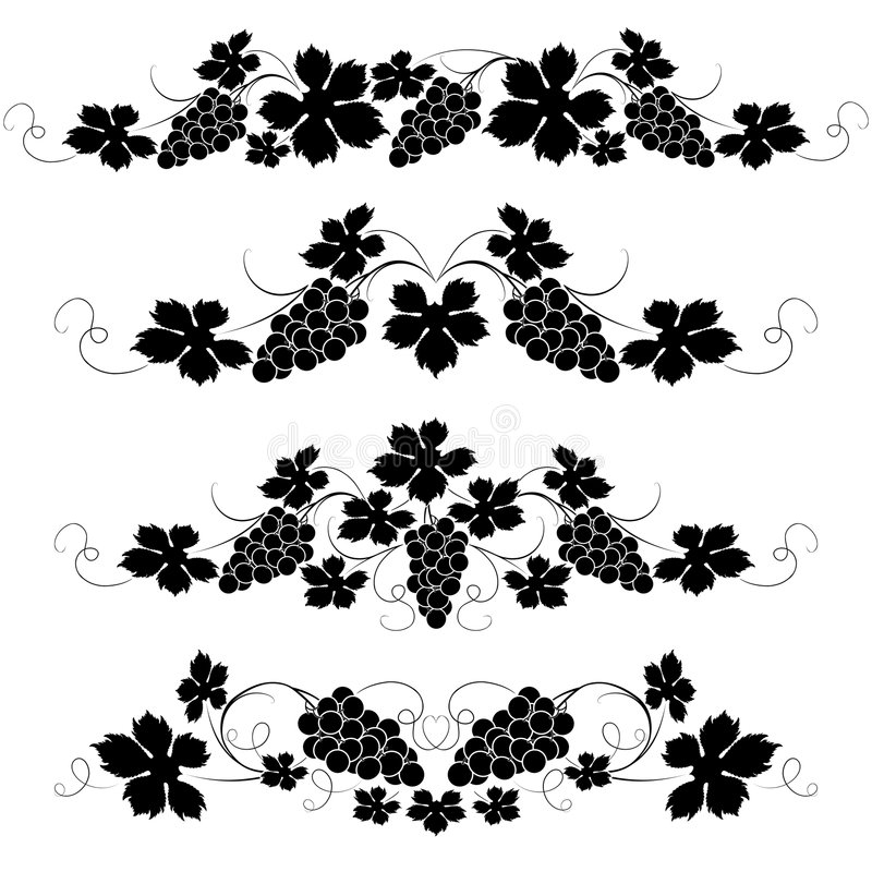 Vine. Decorative elements from the vine on a white background royalty free illustration