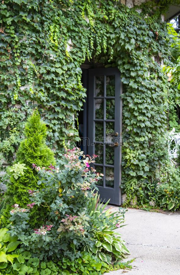Vine covered building with flowers and wild roses and open french door - selective focus stock photos