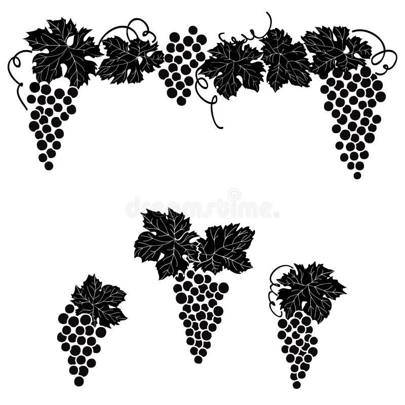 Vine Grape Ornament Element Decor Set. Stock Illustration ...