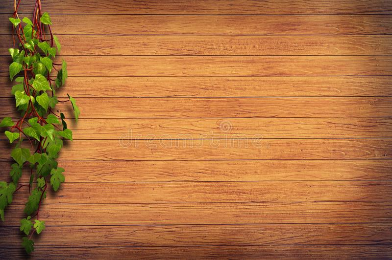 Vine on wooden background royalty free stock images
