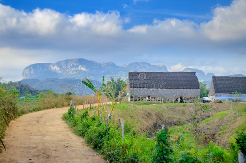 Vineales, wiejski Kuba?ski tytoniu gospodarstwo rolne obraz stock