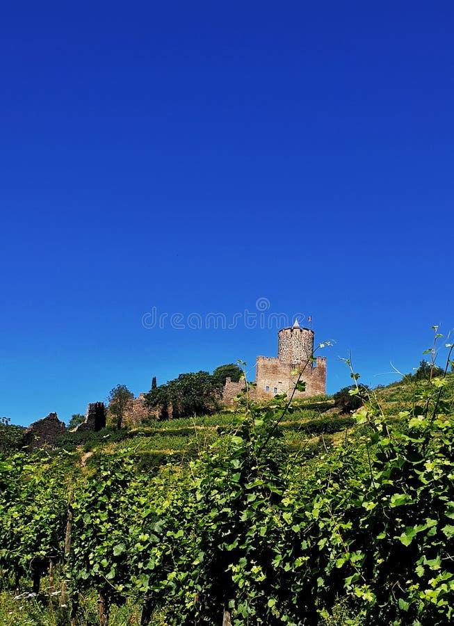 Vinegard kasztel France zdjęcie royalty free