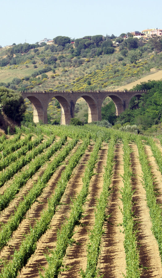 Vinery and bridge view royalty free stock image