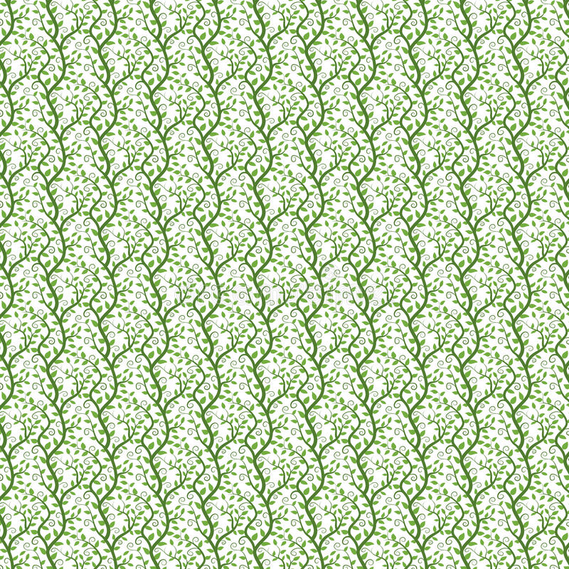 Vines background - seamless pattern vector illustration