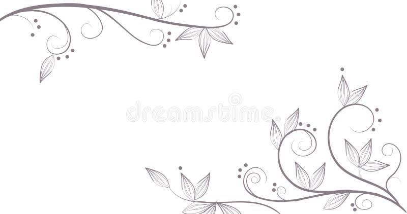 Vines and flower pattern vector illustration