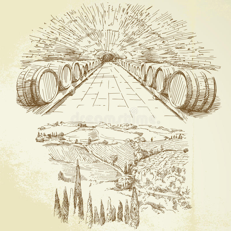 Vineyard. Winery - hand drawn collection vector illustration