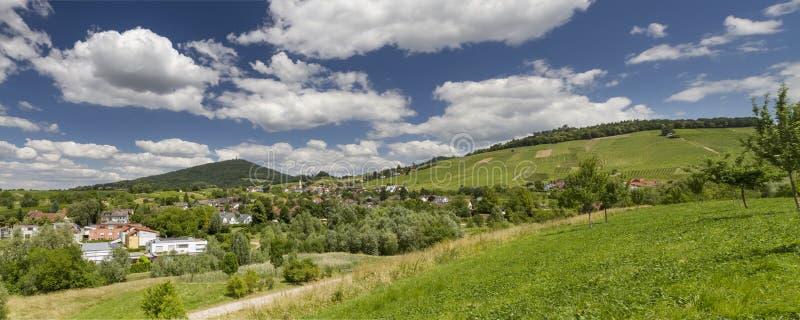 Vineyard in Baden-Baden. Panoramic image of a vineyard in Baden-Baden stock photo