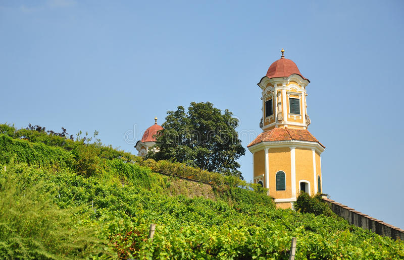 Vineyard at Castle Stainz, Styria, Austria. Europe stock photography