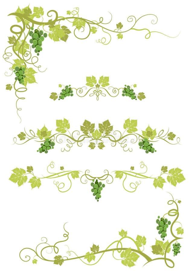 Download Vineyard design stock vector. Illustration of fruit, design - 21490825