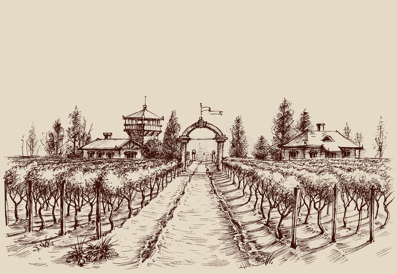 Vineyard drawing. Etch style. Farm entrance and vine culture vector illustration