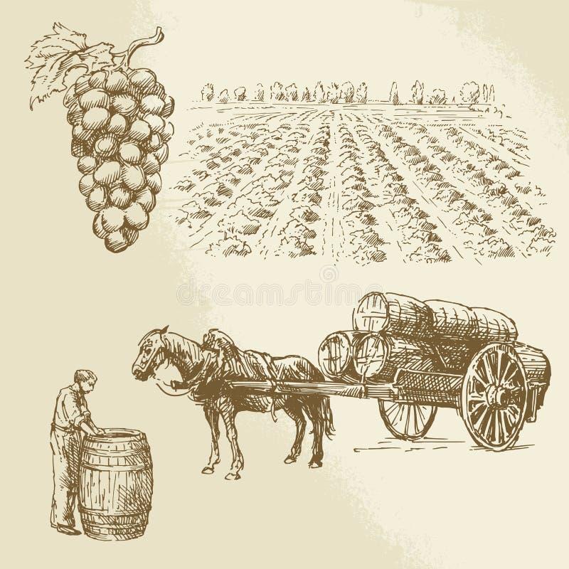 Vineyard, harvest, farm. Hand drawn collection royalty free illustration