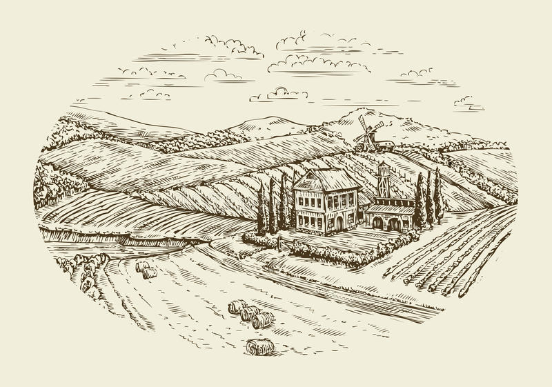 Vineyard landscape. Hand drawn vintage sketch agriculture, farming, farm stock illustration