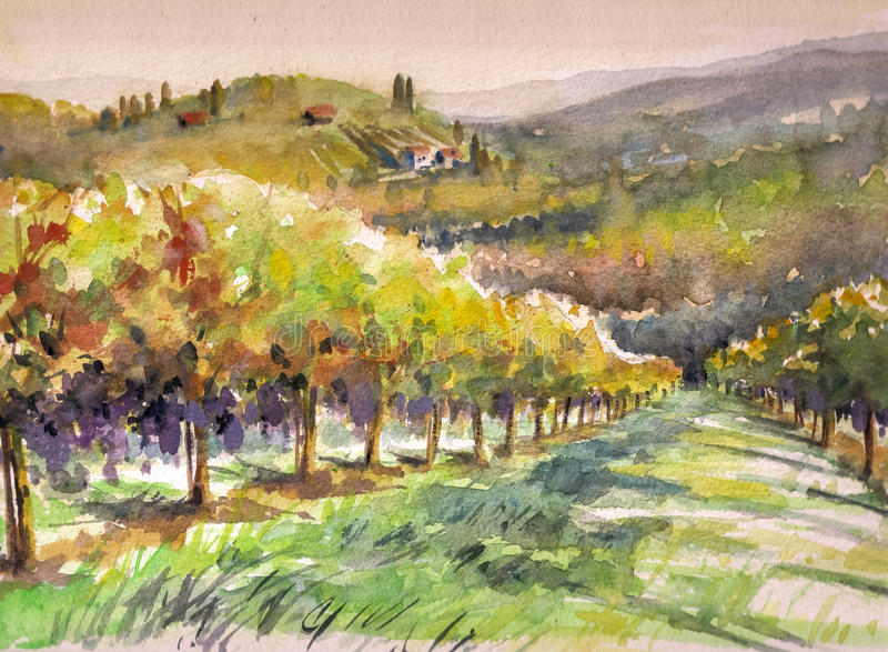 Vineyard. Landscape with vineyard.Picture created with watercolors stock illustration