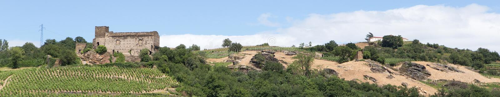 Vineyard and Ruin by the River Rhone, France royalty free stock image