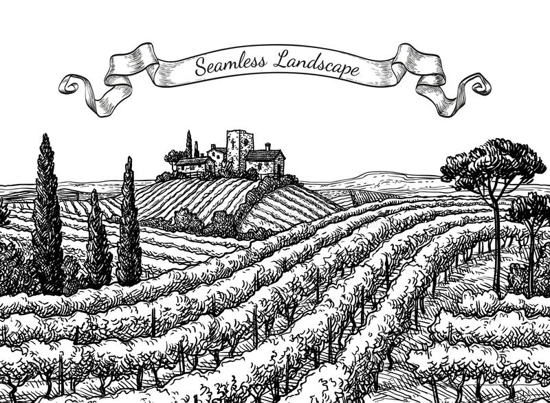 Vineyard seamless landscape. Ink sketch isolated on white background. Hand drawn vector illustration vector illustration