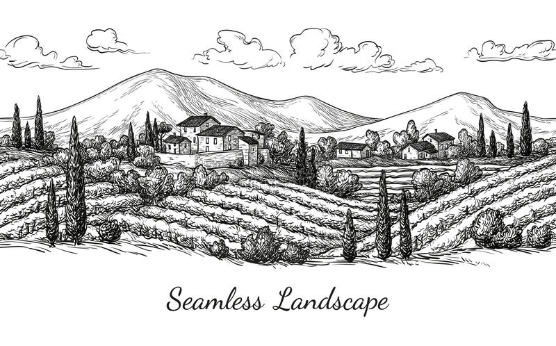 Vineyard seamless landscape. Vine sketch isolated on white. Hand drawn vector illustration vector illustration