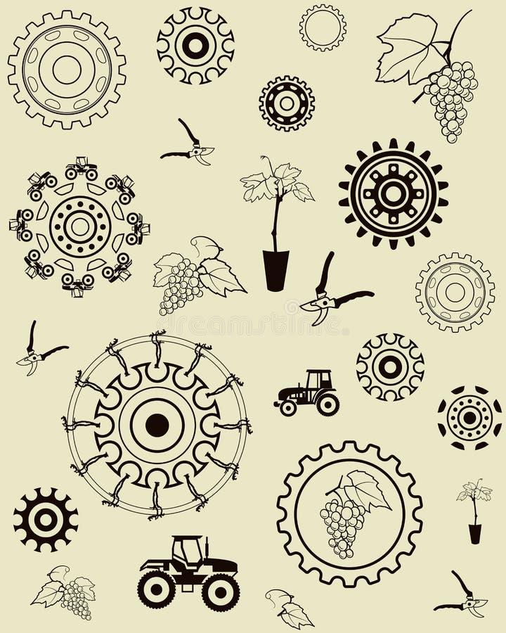 Grapevine Trunk Vector Illustration Stock Vector