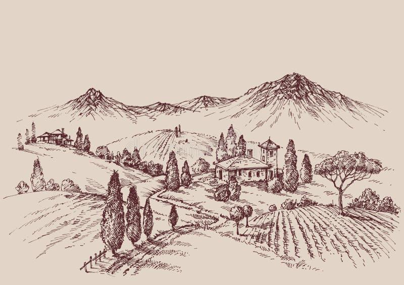 Vineyard sketch. Wine label design. Rural landscape drawing stock illustration