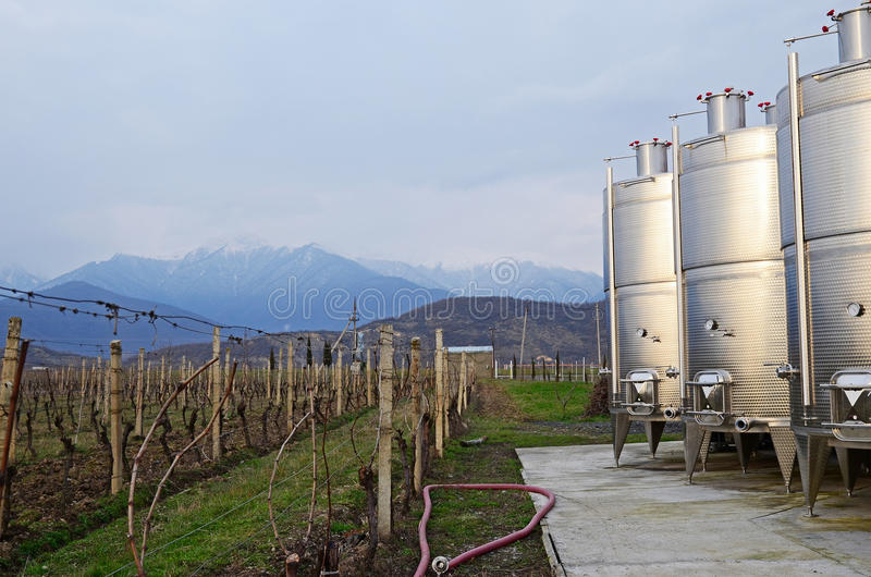 Vineyard and wine tanks in the evening on a background of the Caucasus Mountains. Georgia. Small wine factory in Kakheti region, Georgia royalty free stock photography