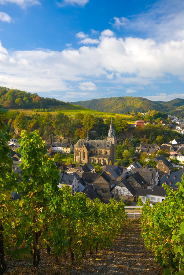 Free Vineyards Along The Mosel Stock Photo - 3779200