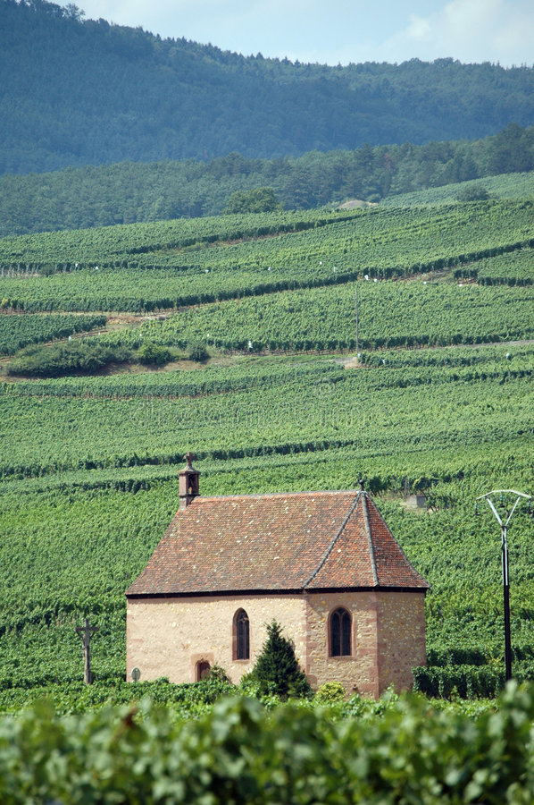 Vineyards in Alsace, France. Alsacian landscape with vineyards and a small chapel in France stock images