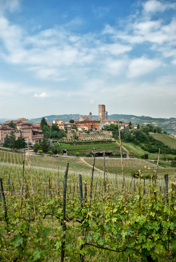 Vineyards around a country town stock image