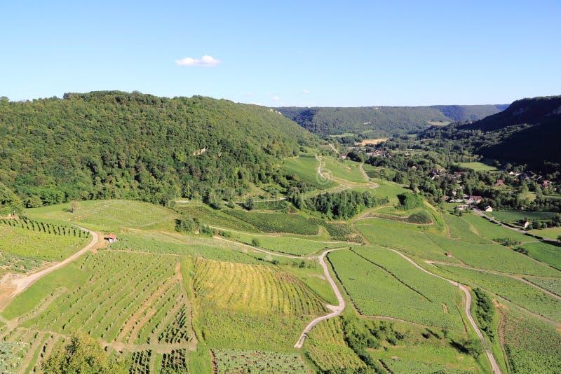 Vineyards of Jura stock images