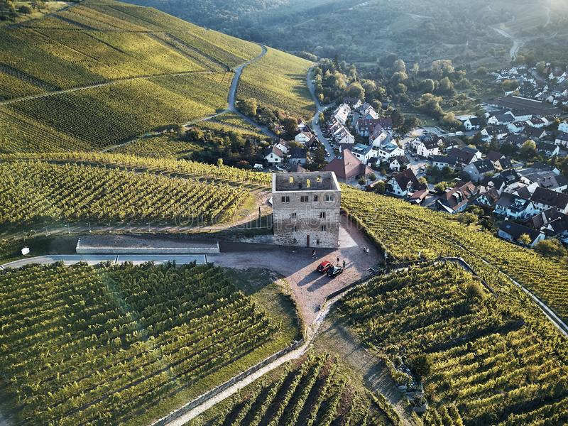 Vineyards landscape on the hill from top with drone. Old stone ruin in the middle of the field. Green structure nature royalty free stock photos