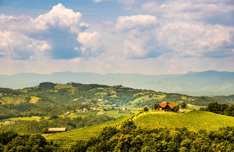 Vineyards in south styria in Austria. Landscape of Leibnitz area from Kogelberg. Tourist destination, Green hills of grape crops and mountains royalty free stock photos
