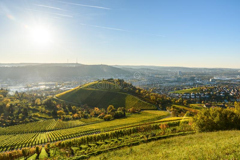 Vineyards at Stuttgart - beautiful wine region in the south of Germany stock image