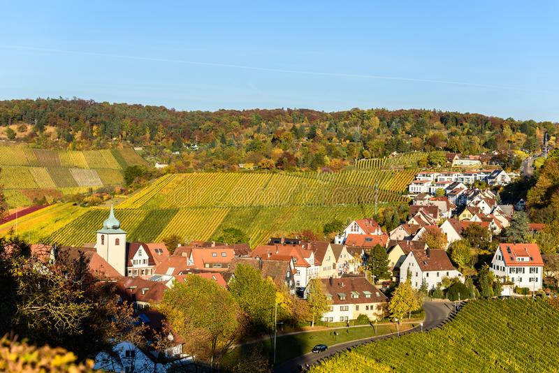 Vineyards at Stuttgart - beautiful wine region in the south of Germany stock images